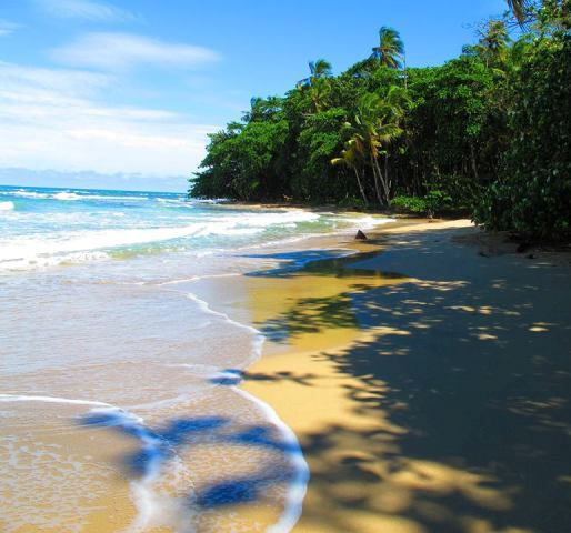 Playa Cocles, South Caribbean, Costa Rica