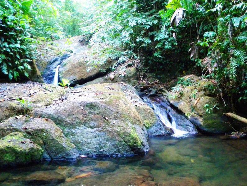 Astua Waterfalls, Portasol Rainforest & Ocean View Living in Costa Rica