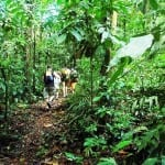 Hiking at Playa Nicuesa Rainforest Lodge in Costa Rica