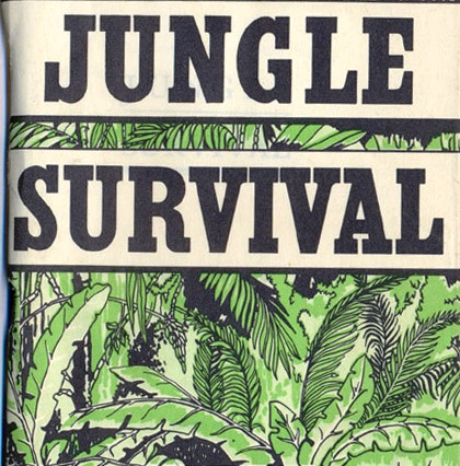 how to survive in a jungle essay How to survive a plane crash on a deserted island plane crashes are one of the least likely accident to occur, with the number of accidents being less.