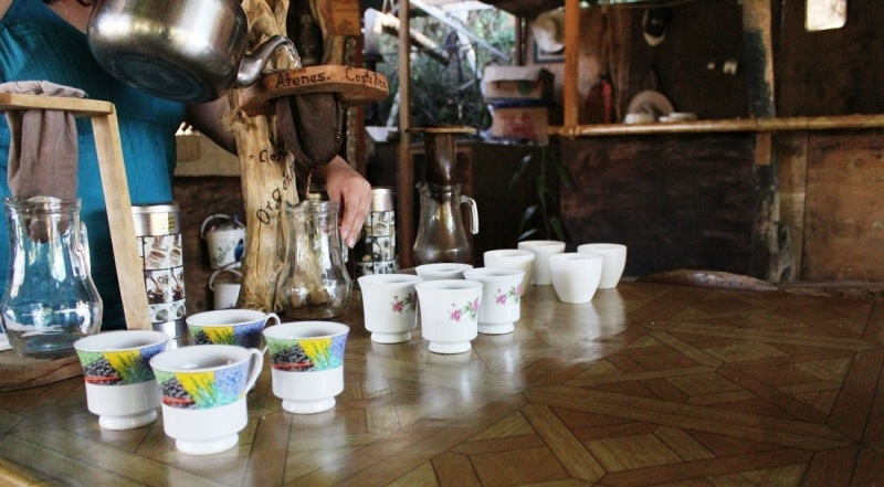 El Toledo coffee tour Atenas Costa Rica