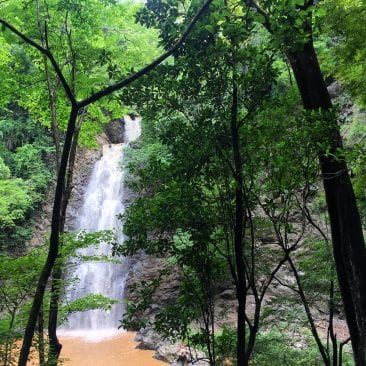 Day trip adventure to visit Montezuma waterfalls