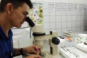 Costa Rica's Veragua Rainforest attracts scientific research groups
