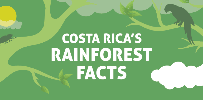 COSTA RICA´S RAINFOREST FACTS