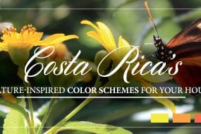 Costa Rica's nature-inspired Color Schemes for your house