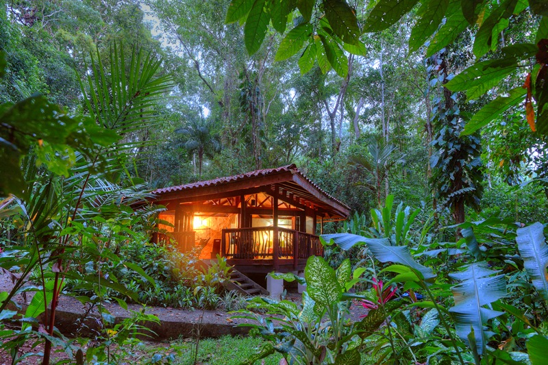 Best Eco Hotels In Costa Rica