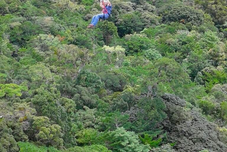 Experience the Tree Top Canopy Tour at El Establo Mountain Hotel