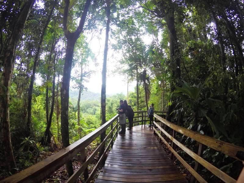 veragua-rainforest-costa-rica