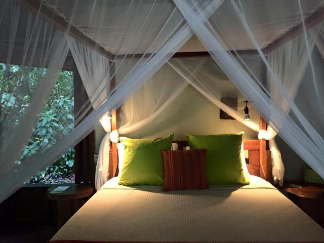 Costa Rica honeymoons at Playa Nicuesa Rainforest Lodge