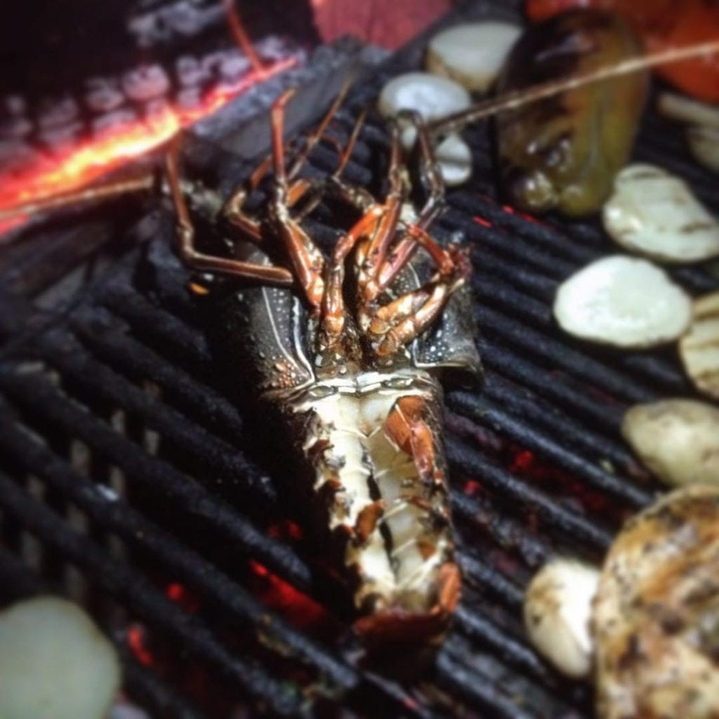 Grilled Lobster ,photo by lucianoriotti.