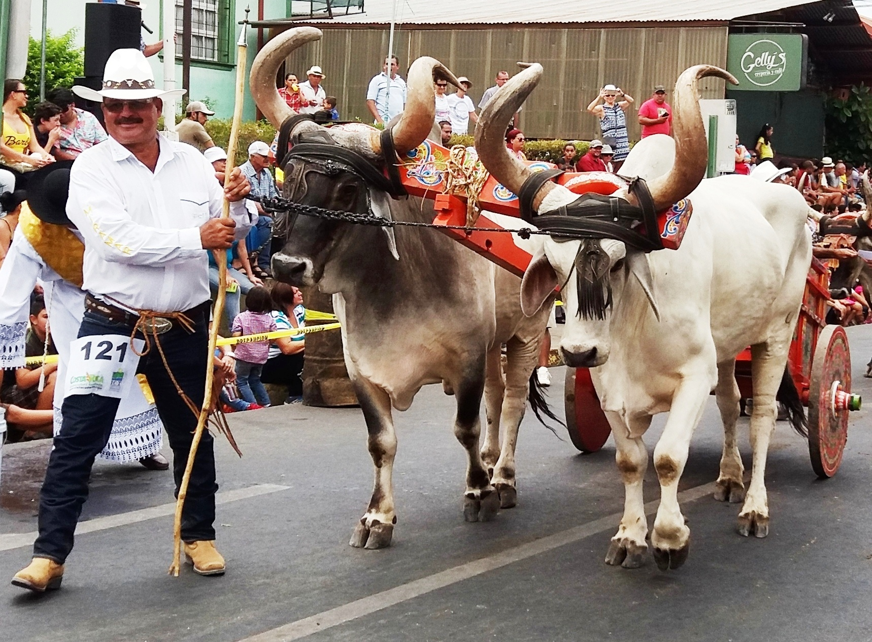 Atenas Costa Rica oxcart parade