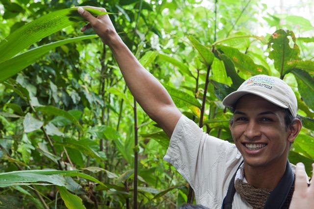 Ultimate Costa Rica Rainforest Experience at Veragua Eco-Adventure