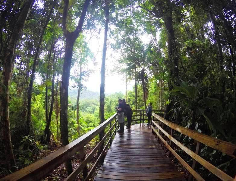 Visit the Costa Rica rainforest at Veragua Eco-Adventure Park by the Port of Limon.