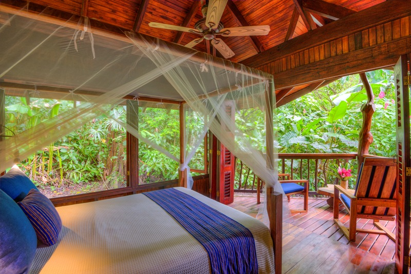 Rooms at Playa Nicuesa Rainforest Lodge