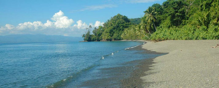 Beach at Playa Nicuesa Rainforest Lodge in Costa Rica