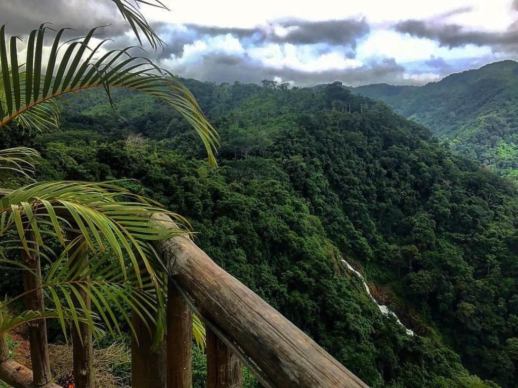 Carara National Park, photo credit @pinacenta.