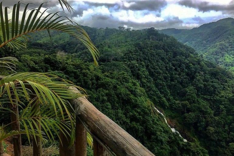 Una escapada al Parque Nacional Carara durante su estadía en el Hotel Amapola