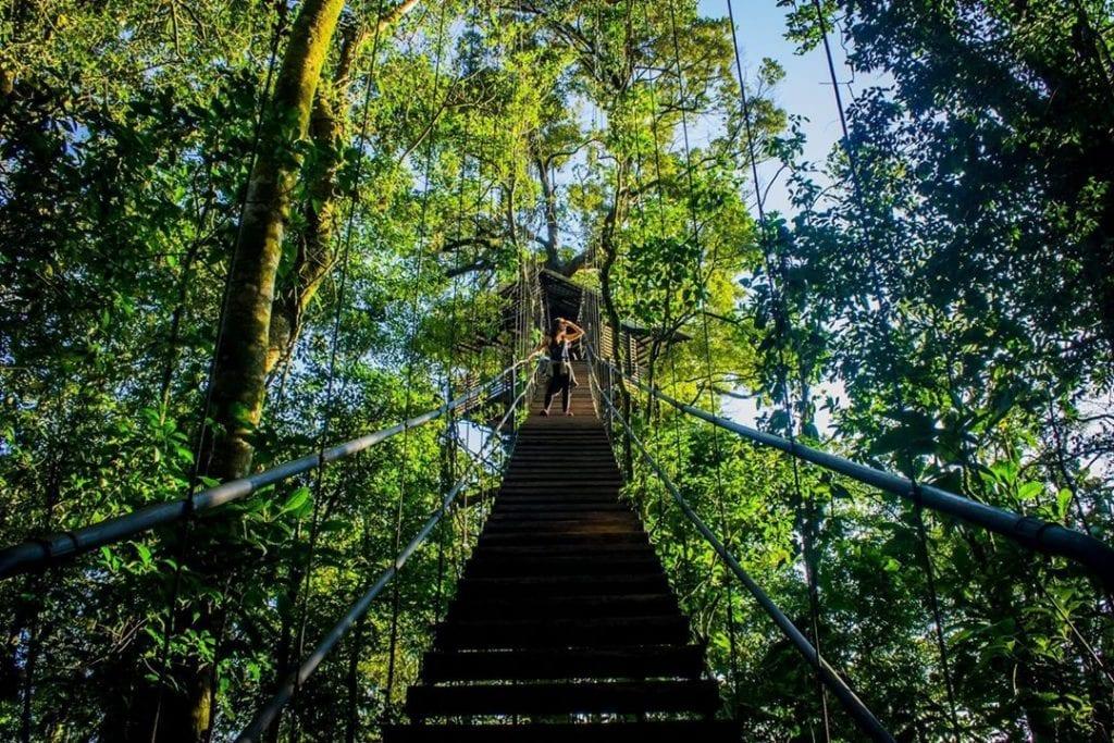 Bridge over rainforest at Sensoria, photo credit guanacastetourscr.