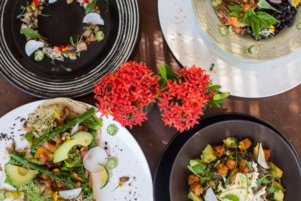 Healthy dining at Hotel Tropical Latino in Santa Teresa Costa Rica