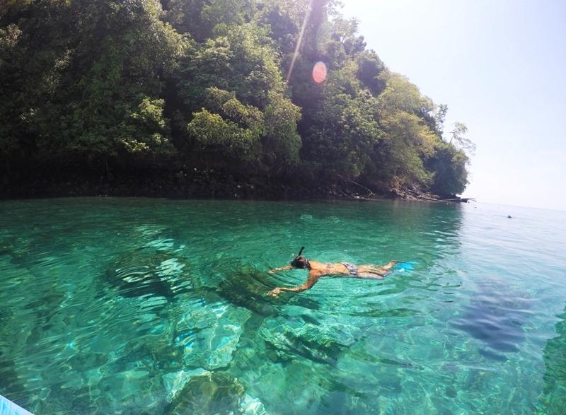 Snorkeling Golfo Dulce Costa Rica