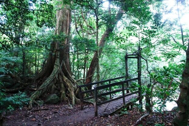 Rincon de la Vieja National Park hiking