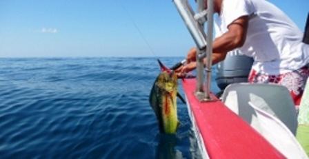 Fishing Santa Teresa Costa Rica