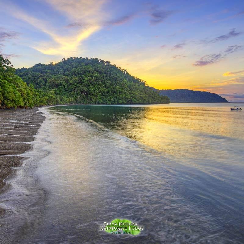 Playa Nicuesa Rainforest Lodge, Golfo Dulce, Costa Rica