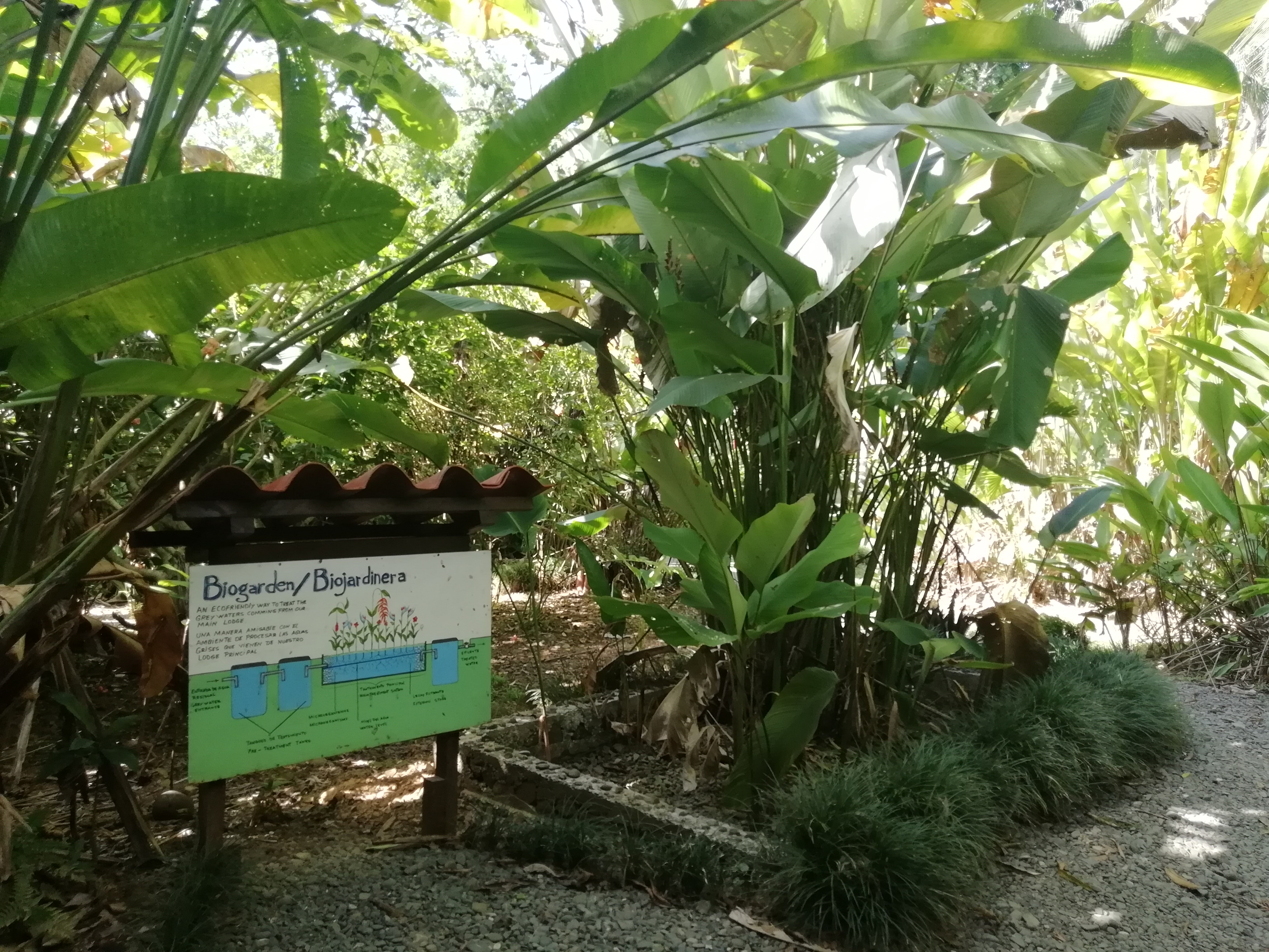 Nicuesa-Lodge-Golfo-Dulce-Sustainable-Tourism-at-its-best