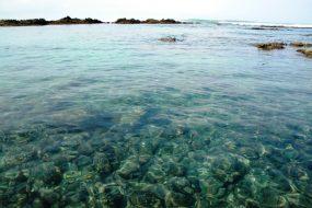 Favorite things to do in Santa Teresa – tidepool snorkeling