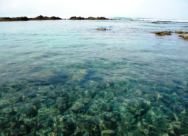 Favorite things to do in Santa Teresa – tidepool snorkeling